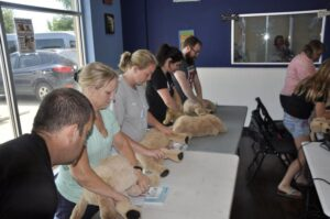 Pet Obedience Training First Aid and CPR Seminars Dallas Texas (2)